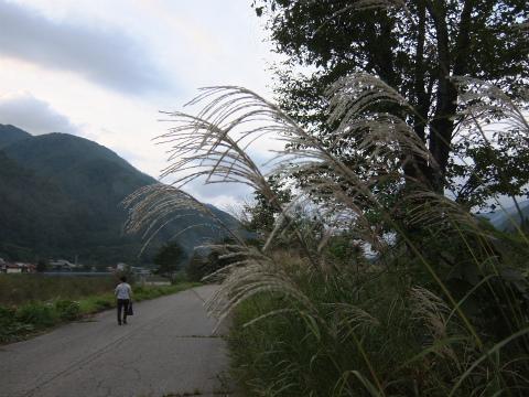 庄川沿い9