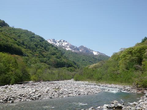 新緑と湯檜曽川と谷川岳と