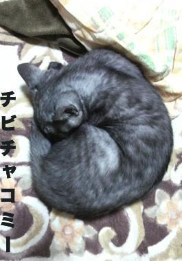 maimai14-chibichako_convert_20140208203109.jpg