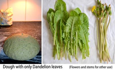 Croissant Dandelion green 021-klein