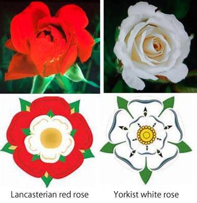 Roses marks