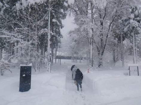 魚沼の里 八海山雪室 2014冬