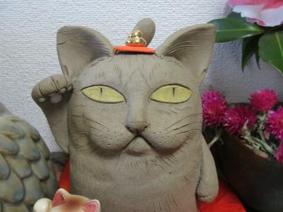 猫と山茶花