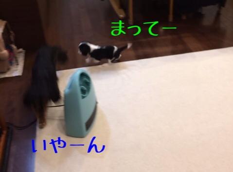 fc2blog_20141016100542df8.jpg