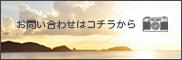 banner-2.jpg