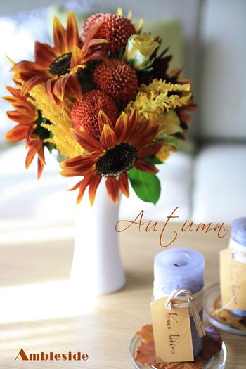IMG_7592-Autumn.jpg