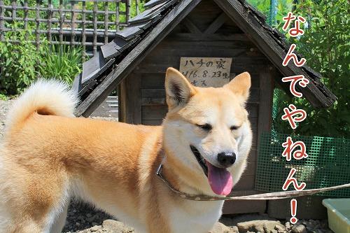 s-takumi2140930-229