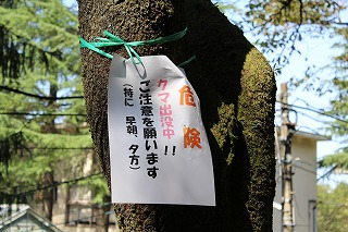 s-jyumokuIMG_4035