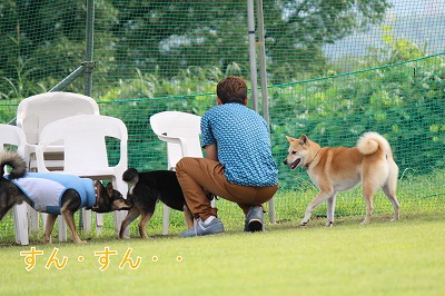 s-kuroshiba141020-IMG_3439