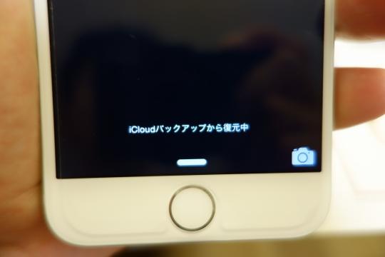 DSC5179i6.jpg