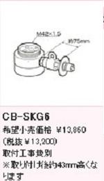 CB-SKG6.jpg