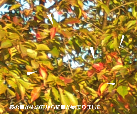 201410242.png