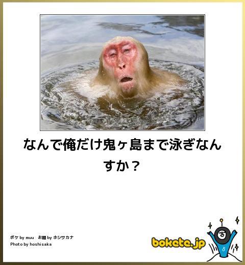 2013103017395998a.jpg