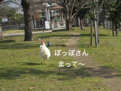 ni-123_20140123225809d59.jpg