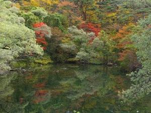 2014hahanuma-kouyou1-web300.jpg