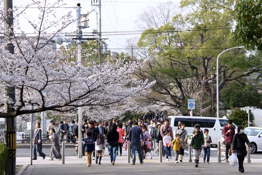 20130330_shukugawa_park-01.jpg