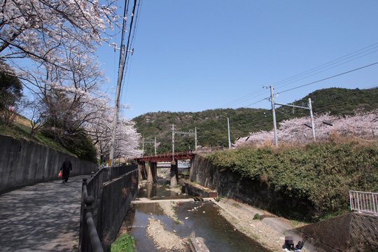 20130330_yamanakadani-03.jpg
