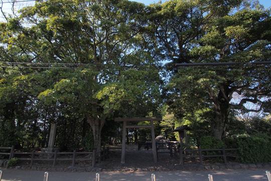 20130428_itsukinomiya-29.jpg