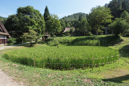 20130813_hida_folk_village-66.jpg