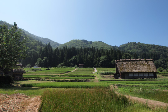 20130814_historic_villages_of_shirakawago-36.jpg