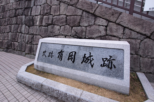 20140102_arioka_castle-01.jpg