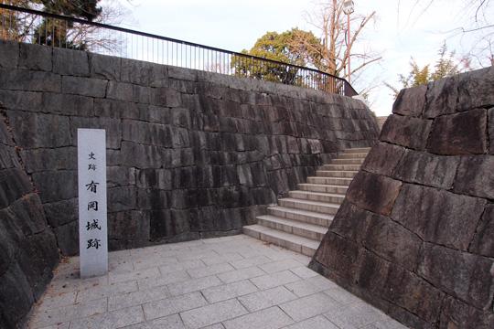 20140102_arioka_castle-03.jpg