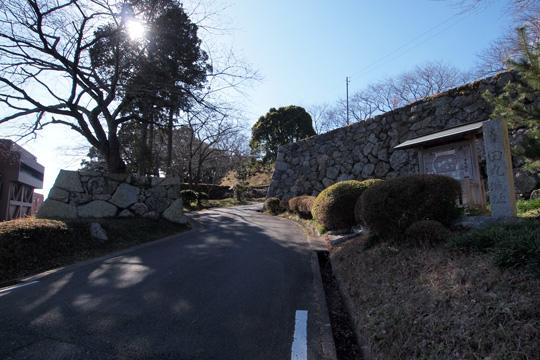 20140105_tamaru_castle-01.jpg
