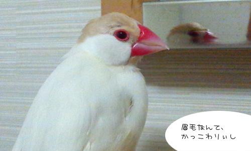 かっこわりぃ_4