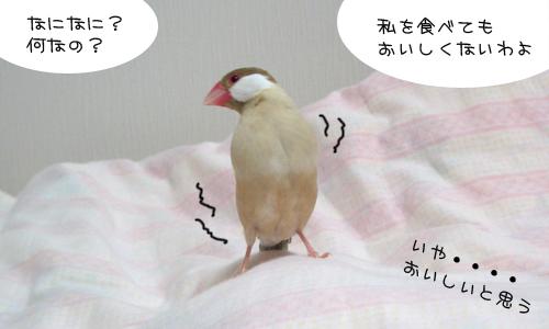 なにかいる!_3