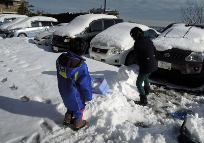雪かき参戦