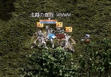 1_2013112308262734c.jpg