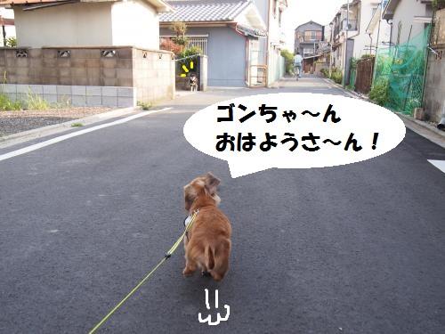 001_convert_20130710100056.jpg