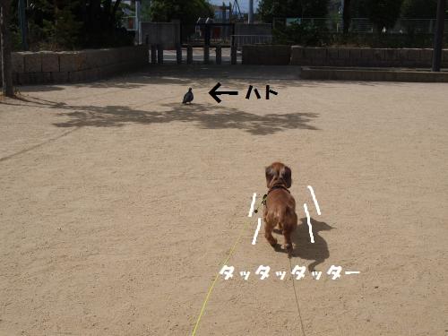 002_convert_20130706213428.jpg