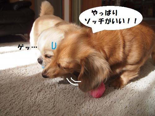 002_convert_20131119222759.jpg