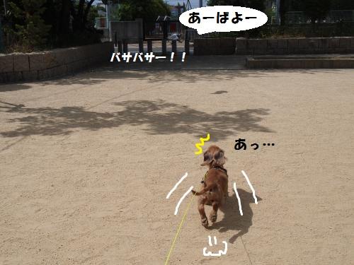 003_convert_20130706213500.jpg