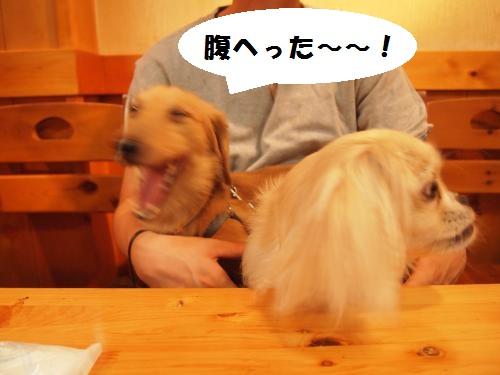 004_convert_20130715173155.jpg
