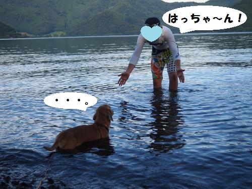 004_convert_20130724140018.jpg