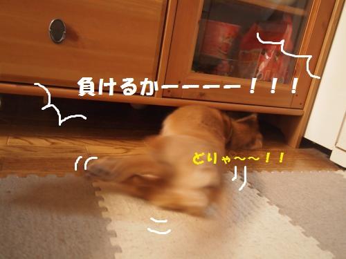 004_convert_20130805225159.jpg