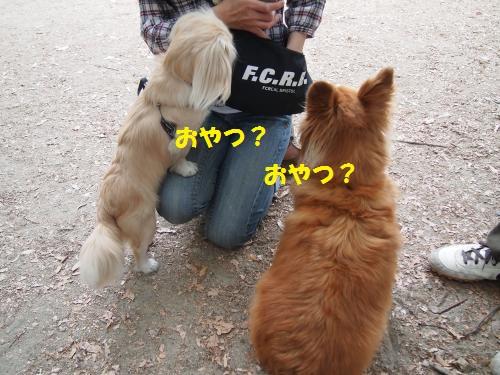 005_convert_20130523142807.jpg