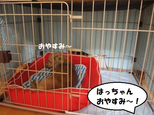 005_convert_20130919152120.jpg