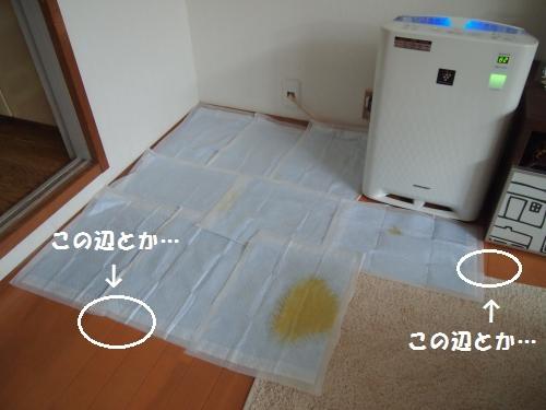 008_convert_20130705122005.jpg