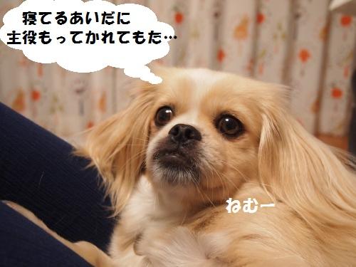 008_convert_20130708215435.jpg