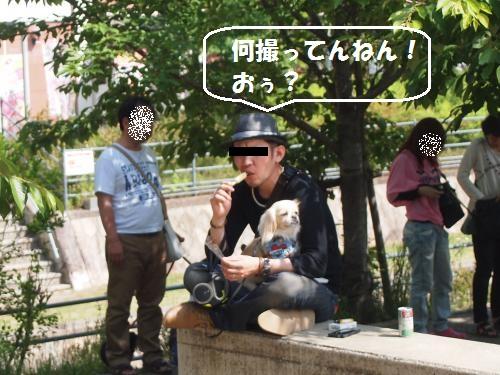 024_convert_20130526152605.jpg
