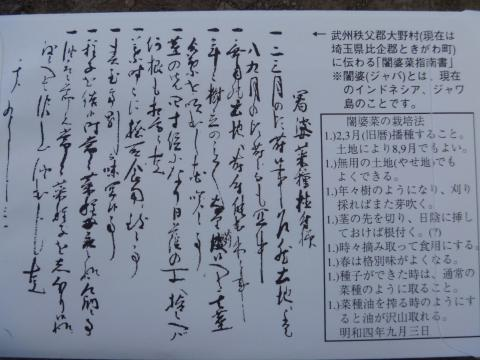P1000917_縮小