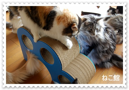blog5_201309101303218a9.jpg