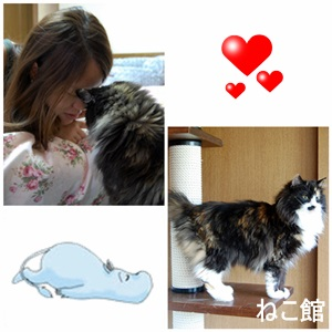 blog9_201309240916326f4.jpg