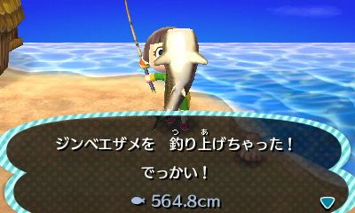 島 のみ 背びれ の の ある 魚