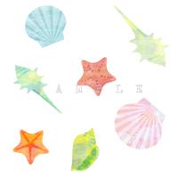 エコでナチュラルな自然イラスト素材 貝貝殻のイラスト