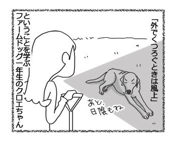 羊の国のラブラドール絵日記シニア!!「風上におく」6