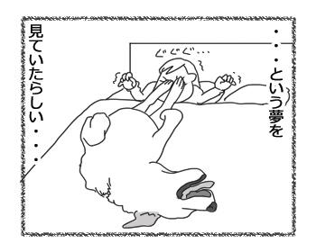 羊の国のラブラドール絵日記シニア!!「クロエちゃんの夢」4